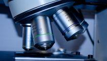 Mikroskop - Analytik - Labor