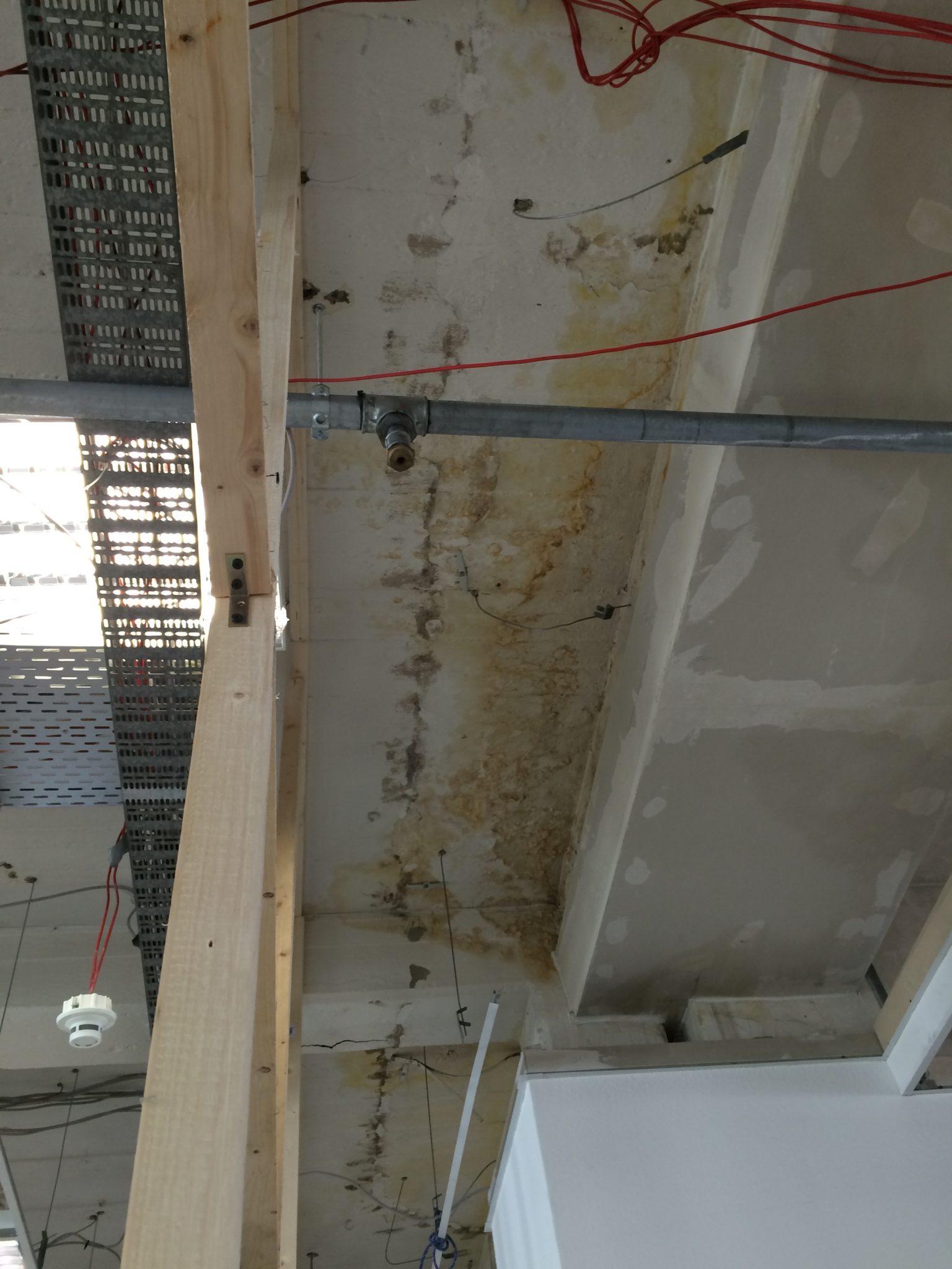 Schimmelpilz- und Wasserschäden an einer Decke eines Serverraumes