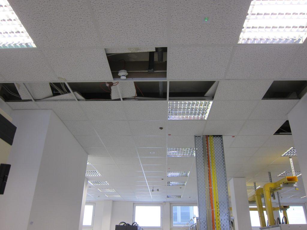 Wassereintritt (Fäkalwasser) in eine abgehängten Decker eines Serverraumes - die durchgeführt Schimmelanalytik weist eine hohe Luftkeimbelastung auf.